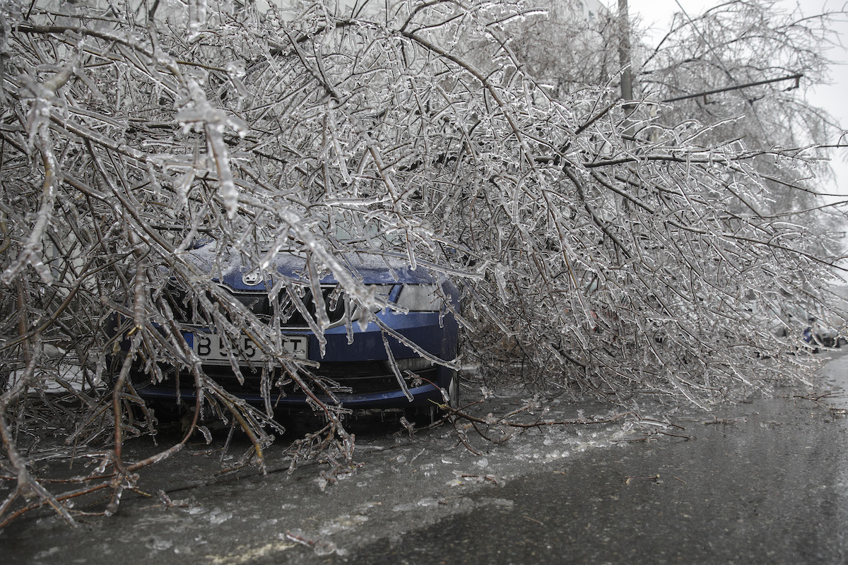 Hundreds of trees down, cars damaged in Bucharest after