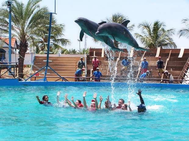 Dolphinarium in romania 39 s seaside city constanta to get for Pool en keeshonden show