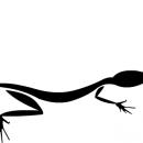 Thomas W. Lizard