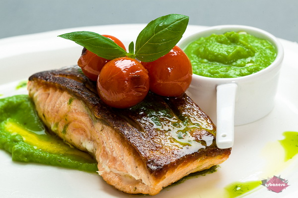 Salmon Urbanesc