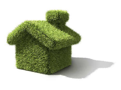 Build Green Homes romanians get money from the state to build green homes