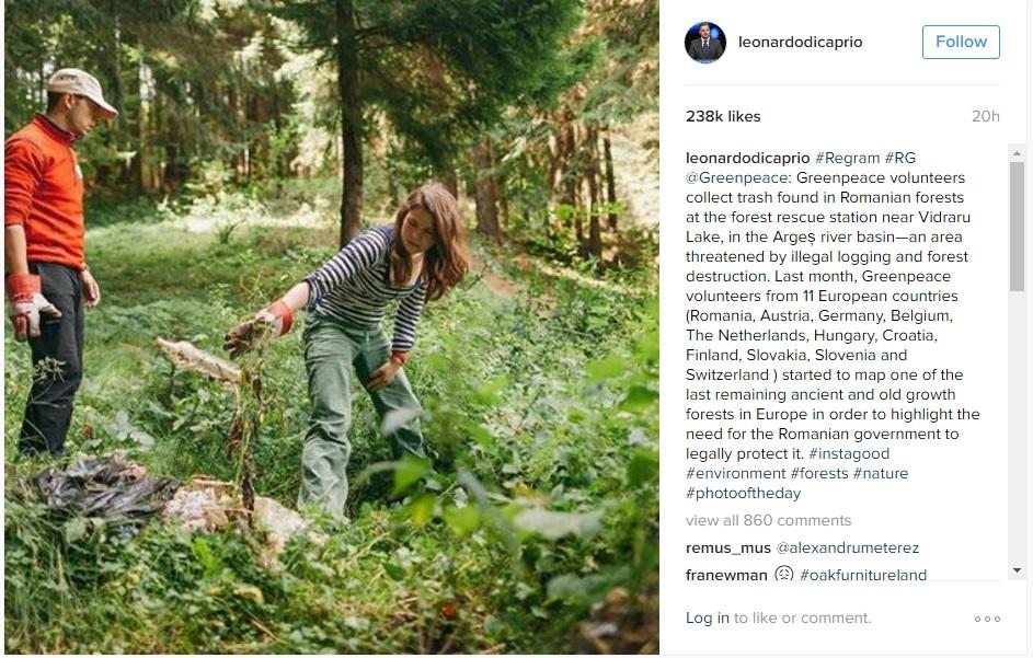 Leonardo DiCaprio instagram message about Romania's virgin forests